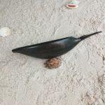scuplture-baleine-en-bois-hintsy-récipient-biscuits-apéritifs-artisanat-malgache-2